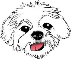 Pcci papers for sale shih tzu