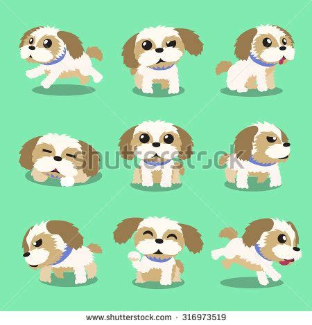 Pcci papers for sale shih tzu Wunderlist